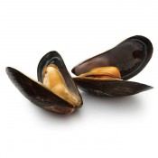Mussels (9)