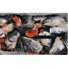 Frozen Salmon Heads ~20kg blocks