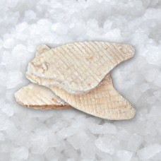 Alaska Pollock mince meat ~15 kg   frozen