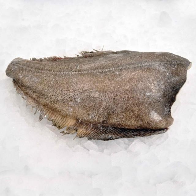 Halibut HGT j cut 3+  kg/pcs  ~ 20 kg carton frozen