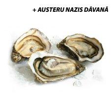 Oysters Bretagne Nr2, France