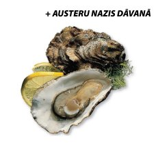 Oysters Qualimer Nr2, Netherlands