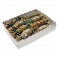 Freshwater prawns head-on, shell-on, raw 6/8 Vietnam (10x1kg) 20%