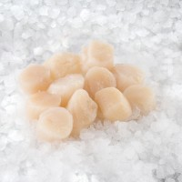 Sea scallop meat 10/20 roe-off USA (10x1kg) 10%