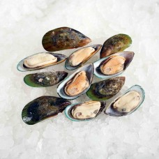 Greenshell mussels half-shell 30/40 New Zealand (10x1kg)