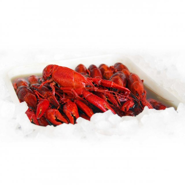 Crayfish WR cooked in dill-brine, 1kg