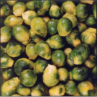 Brussels sprouts 25/30, 2,5kg