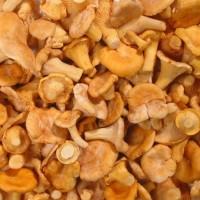Gailenes blanšētas, sald. (10*1kg) Lietuva