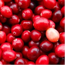 Сranberries frozen (10x1kg) Canada
