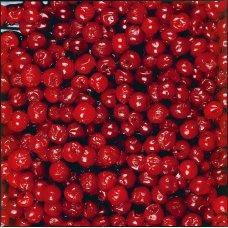 Cherries (4*2,5 kg) Poland